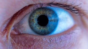 Kuvassa ihmisen silmä.