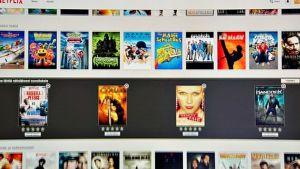 Netflixin netti-tv