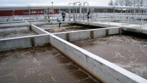 Ruskeaa vesi kuplii betonialtaissa
