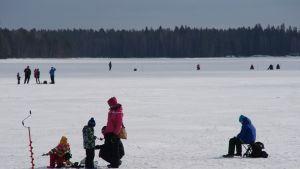 Pilkkijöitä Oulujärven jäällä