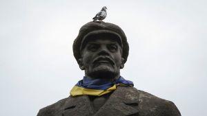 Venäjän entistä johtajaa Vladimir Leniniä esittävä patsas Ukrainan lippu kaulassaan Slavianskissa, Ukrainassa.