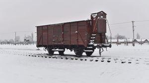 Junanvaunu Auschwitzin keskitysleirillä