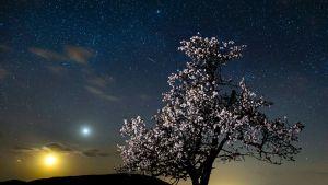 Kuu, Venus ja ilmakehässä palava meteoriitti näkyvät yökuvassa Unkarin taivaalla.