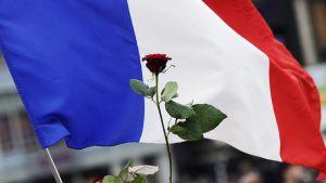 Ruusu Ranskan lipun edessä.