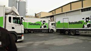 Kuorma-autoja, joiden kyljessä lukee Satamaito.