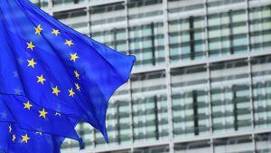EU:n liput liehuvat EU:n rakennuksen ulkopuolella Brysselissä.
