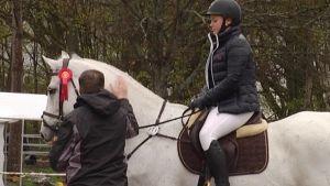 Hevonen palkintojenjaossa
