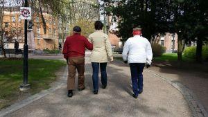 Kuvassa kolme ihmistä kävelee puistossa, vasemmanpuoleinen mies ja keskellä kulkeva nainen kävelevät käsikoukkua.