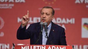 Erdogan neuvoo kuvassa.
