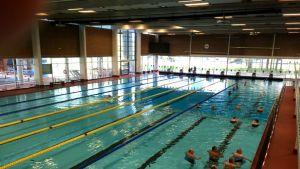 kalevan uintikeskuksen uima-allas
