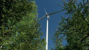 Latamäen tuulivoimapuisto Luhangassa.