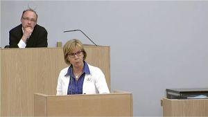 Anna-Maja Henriksson riikkabeivviin 2.6.2015.