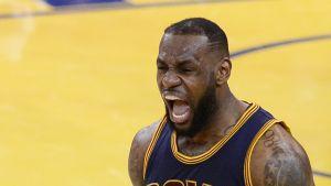 LeBron James juhli toisen NBA-finaalin voittoa eläimellisesti.
