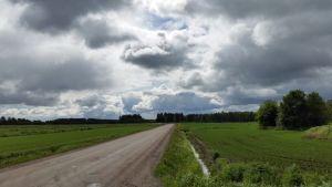 Synkät pilvet ovat leijuneet koko alkukesän viljelijöiden kiusana. Sade ja kylmä sää ovat vaikeuttaneet kylvötöitä ja hidastaneet sadon kehitystä. Siikalatvan Mankilankylän peltoja 17.6.2015.