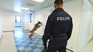 Poliisi ja koira