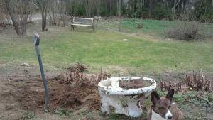 Kajaanilaisen vuonna 1989 valmistuneen rivitaloasunnon pihasta löytyi haudattuna kaksi vessanpönttöä.