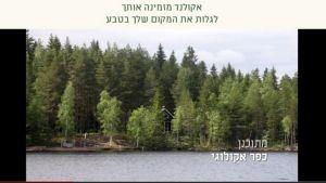Kuvakaappaus Ecolandin Kaavin-hankkeen nettisivuilta.