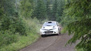 Rutkasti töitä. Toyota testaa kuluvalla viikolla uutta WRC-autoaan Keski-Suomessa kolmen kuljettajan voimin.