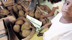 Myrkytyksen aiheuttaneet makeiset oli tehty durianhedelmistä.