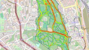 Näitä reittejä ihmiset kulkevat eteläisessä keskuspuistossa.