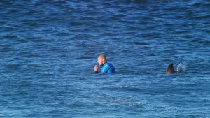 Mick Fanning, World Surf League