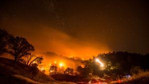 Palopesäkkeitä Clearlake Oaksin alueella.