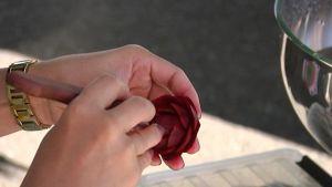 Kotimainen punajuuri muuntuu ruusuksi