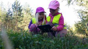 Lapset kuvaavat luonnossa apiloita Petäjäveden metsäeskarissa.