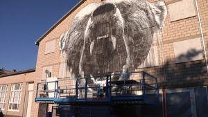Vaaleaantiiliseinään maalattu karhun pää. Edessä rakennusteline.