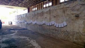 Maatalousyrittäjän tarvitsemat lomakkeet pyykkinarulle ripustettuna