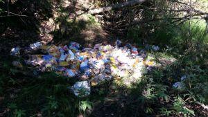 Jätteitä metsässä