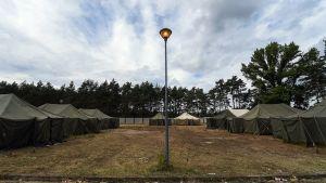 Turvapaikanhakijoille pystytetty telttakylä.