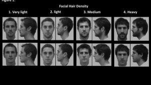 miesten kasvokuvia parran kanssa ja ilman partaa.