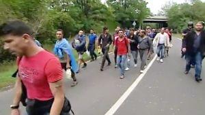 Turvapaikanhakijoita Unkarissa