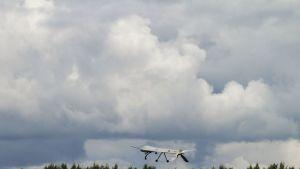 Miehittämätön Yhdysvaltain ilmavoimien MQ-1 Predator -lennokki esittelylennolla Lievarden lentotukikohdassa Latviassa.