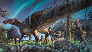 Maalaus kymmenkunnasta pitkähäntäisestä dinosauruksesta saniaruohikossa.