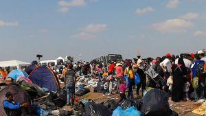 Kuopiolaispariskunta oli auttamassa pakolaisia Röszkessä, Unkarin ja Serbian rajalla.