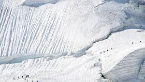Vuorikiipeilijöitä jäätiköllä Sveitsissä.