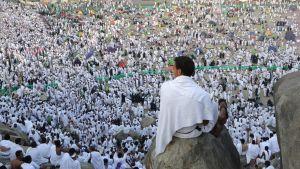 Pyhiinvaeltaja katseli korkealta muiden Mekkaan vaeltavien valkopukuista joukkoa tiistaina Saudi-Arabiassa.
