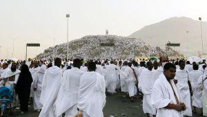 Pyhiinvaeltajat kokoontuvat Mekan läheisyydessä sijaitsevan Arafatin kukkulan juurella.