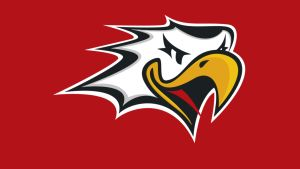 Vaasan Sport logo SM-liiga Liiga