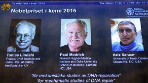 Tomas Lindahl, Paul Modrich ja Aziz Sancar.
