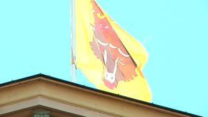 Lippu katolla. Lipussa keltaisella pohjalla karhun kuva.