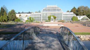 Helsingin yliopiston kasvititeteellisen puiston uudistettu Evoluutiopuutarha