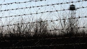 Bulgaria on suojannut Turkin vastaisen rajansa noin 30 kilometriä pitkällä piikkilanka-aidalla.