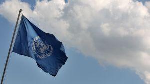 YK-lippu hulmuaa