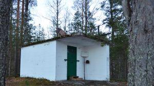 Jääkäri Jussin hautaselli Iivanan saaressa Rautjärvellä