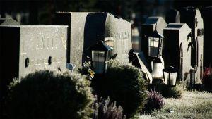 Kuva hautausmaalta. Hautakiviä, lyhtyjä ja kanervia.