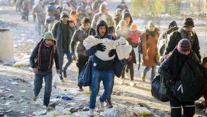 Turvapaikanhakijat kulkevat kohti Slovenian ja Itävallan välistä rajaa .