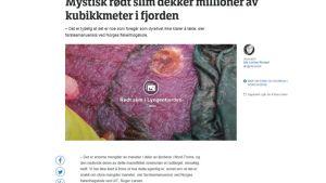 Kuvankaappaus NRK:n sivuilta maneettimassaa käsittelevästä jutusta.